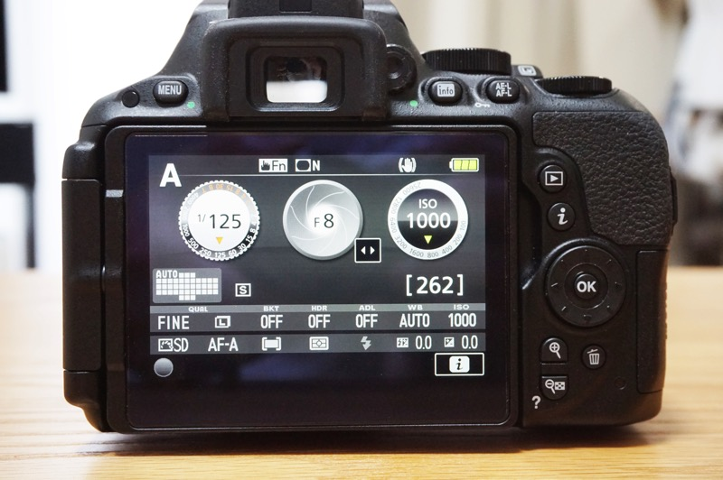 Camera d5500 review11